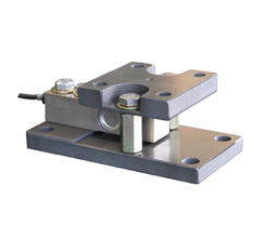 Associated Scale Service ASAM Weigh Module